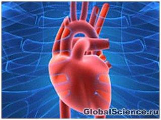 Серце, легені і кров людини здатні відчувати запахи
