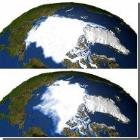 В 2008 году Северный полюс может остаться безо льда