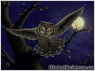 Ученые раскрыли секрет темной стороны человеческого характера