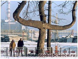 Обнаружены деревья-мутанты в Чернобыле способные менять цвет и форму