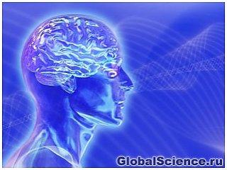 Ученые обнаружили неизвестную форму активности в коматозном мозге