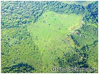 В Амазонии обнаружены следы неизвестной цивилизации