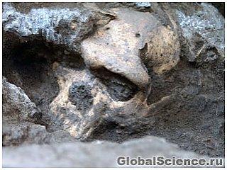 Описание черепов гоминида меняет представление о предках человека