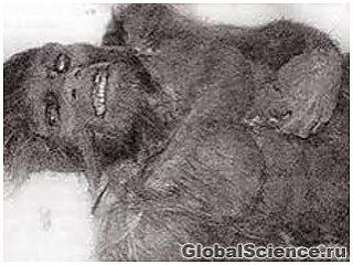 В США найден спрятанный 50 лет назад труп йети