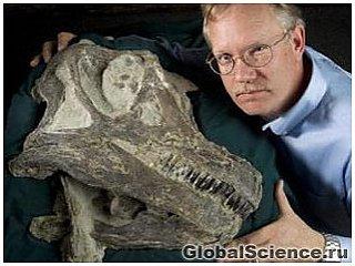 Новый вид динозавра открыт в Юте