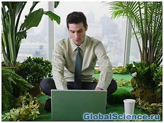 Сигнал Wi-Fi причиняет головную боль и негативно влияет на комнатные растения