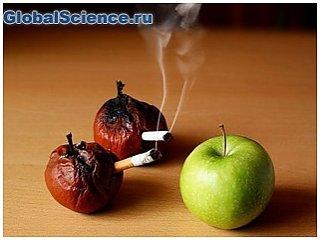 Ученые установили, что употребление фруктов и курение несовместимы