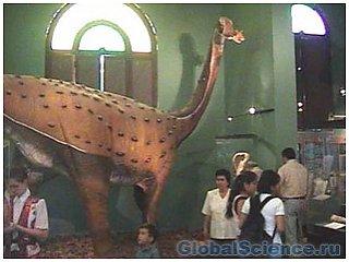 В Китае найден новый титанозавр