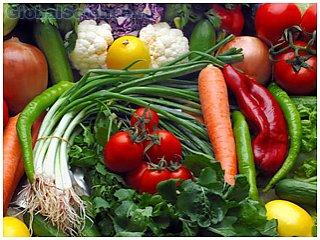 Теперь проверить наличие ГМО в продукте можно дома