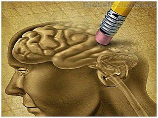 Ученые установили, что нейрогенез стирает детские воспоминания