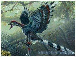 Пернатые динозавры умели летать