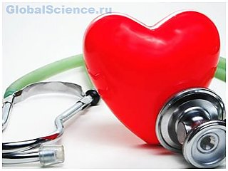 Работа мозга зависит от сердца