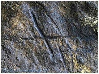 Обнаружен абстрактный рисунок, оставленный неандертальцем