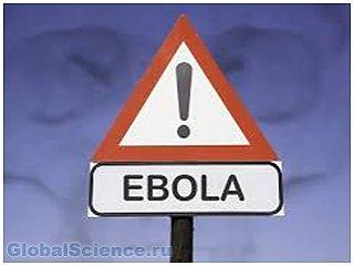 В ДРК от Эбола погиб 31 человек