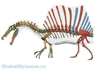 Ученые обнаружили полуводного динозавра