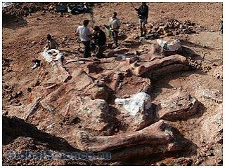 Тайна динозавра с огромными конечностями раскрыта