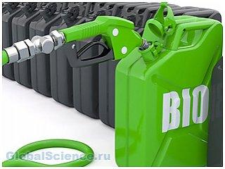 Альтернативное топливо: каким оно может быть?