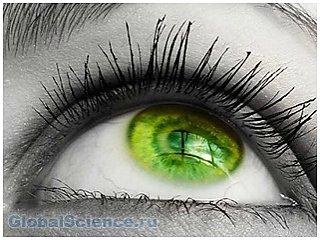 Самый редкий цвет глаз в мире. Фото, история