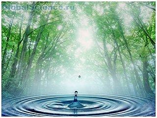 Теория о появлении воды на земле вновь была опровергнута