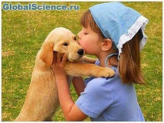 Люди и собаки имеют одинаковые гормоны