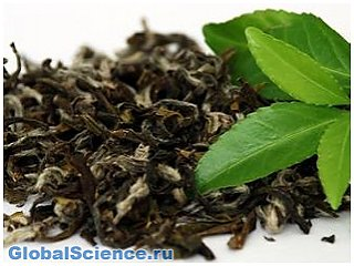 Археологи обнаружили в Китае самые древние листья чая