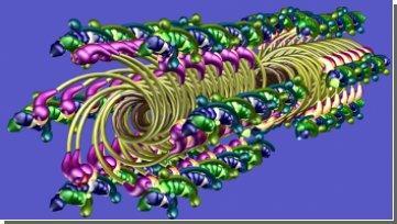 Ученые научились видеть мышечное волокно в действии