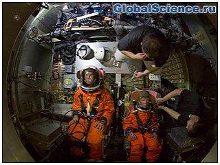 НАСА проводит краш-тесты капсулы для астронавтов с манекенами на борту