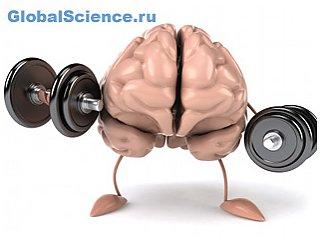 В головном мозге при ожирении возникают отложения