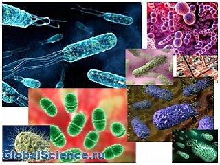 Бактерии-убийцы способствуют расширению «зоны смерти»