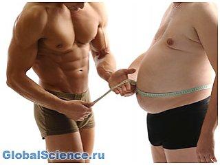 Ученые придумали, как превратить лишний жир в мышцы