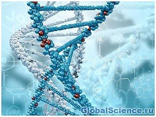 Ученые планируют найти родственников Иисуса Христа через анализ ДНК