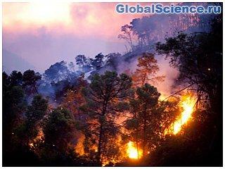 Осторожно: лесные пожары