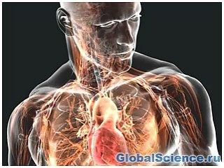 Человеческое тело еще эволюционирует