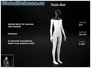 Илон Маск анонсировал создание Tesla Bot