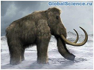 Ученые собираются заселить Арктику шерстистыми мамонтами