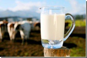 В сыром молоке обнаружен новый вид бактерий