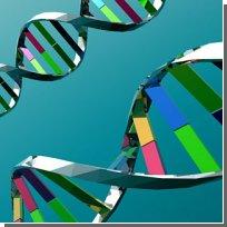 СПИД: Митохондриальная ДНК может взорвать бомбу замедленного действия
