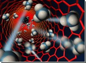 Нанотрубки заставляют зерна прорастать быстрее